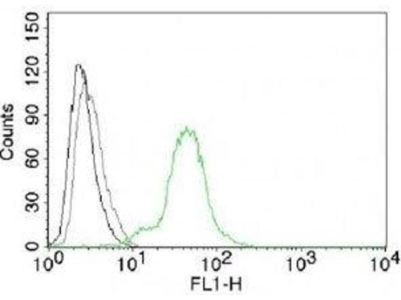 Flow Cytometry (FACS) image for anti-Estrogen Receptor 2 (ER Beta) (ESR2) (C-Term) antibody (ABIN3024794)