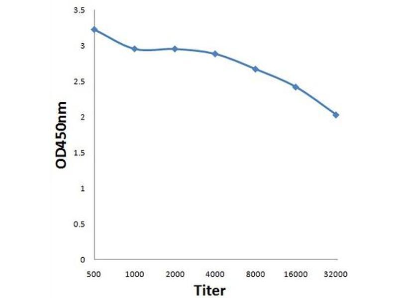 ELISA image for anti-Nuclear Receptor Co-Repressor 2 (NCOR2) antibody (ABIN686302)