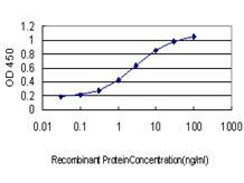 Image no. 3 for anti-POU Class 3 Homeobox 2 (POU3F2) (AA 1-67) antibody (ABIN562322)