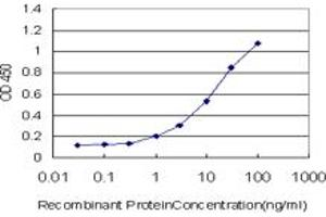 Image no. 2 for anti-Ring Finger Protein 122 (RNF122) (AA 61-155) antibody (ABIN566394)