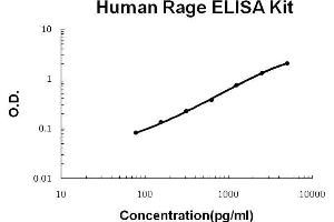 Image no. 1 for Advanced Glycosylation End Product-Specific Receptor (AGER) ELISA Kit (ABIN921104)