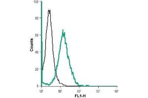 Flow Cytometry (FACS) image for anti-BAI1 antibody (Brain-Specific Angiogenesis Inhibitor 1) (N-Term) (ABIN1742111)