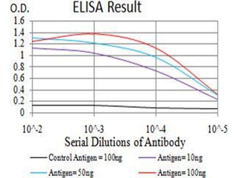 ELISA image for anti-Complement Component 1, Q Subcomponent, A Chain (C1QA) (AA 23-167) antibody (ABIN5542307)
