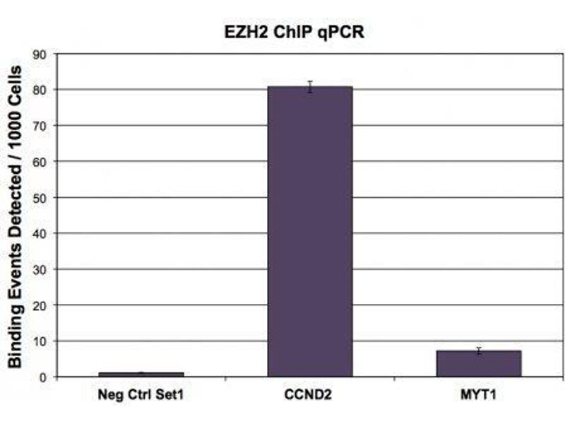 chip dna was used in