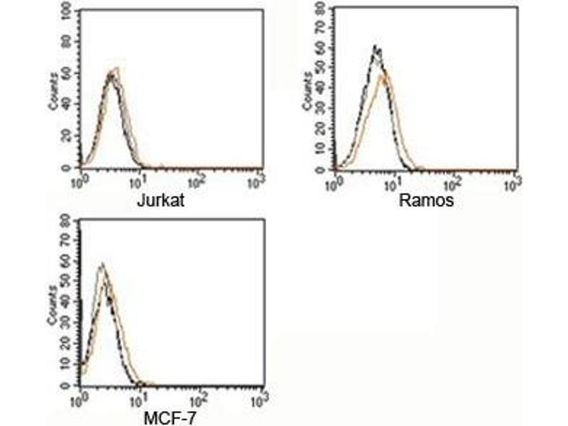 Flow Cytometry (FACS) image for Rabbit IgG isotype control (ABIN3023746)