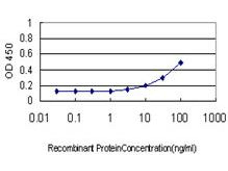 ELISA image for anti-V-Akt Murine Thymoma Viral Oncogene Homolog 1 (AKT1) (AA 1-480), (full length) antibody (ABIN559829)