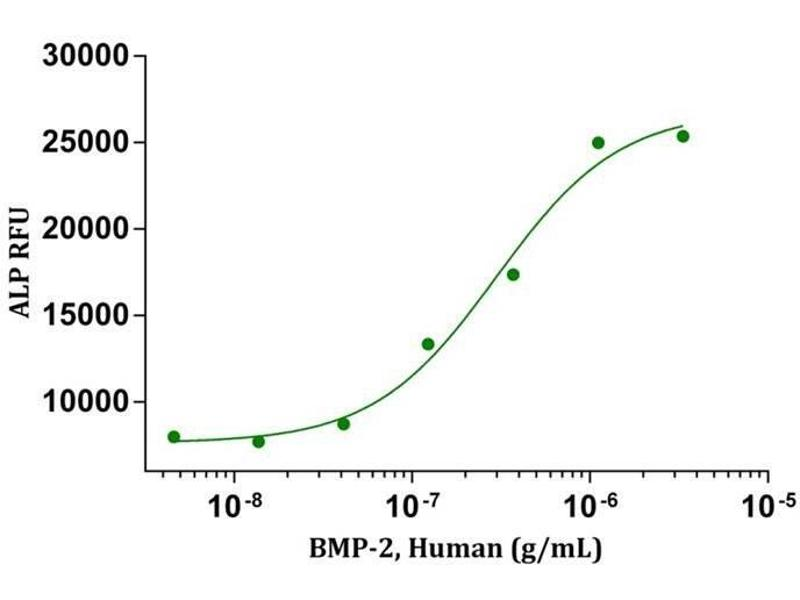Activity Assay (AcA) image for Bone Morphogenetic Protein 2 (BMP2) (AA 283-396) (Active) protein (ABIN2017696)