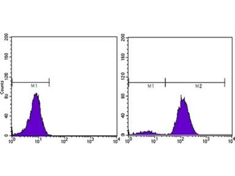 Flow Cytometry (FACS) image for anti-Prostate Specific Antigen antibody (PSA) (ABIN1107902)