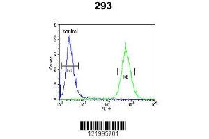 Flow Cytometry (FACS) image for anti-Glial Cell Line Derived Neurotrophic Factor (GDNF) (AA 8-36), (N-Term) antibody (ABIN652624)