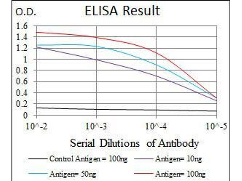 ELISA image for anti-Maternal Embryonic Leucine Zipper Kinase (MELK) (AA 637-651) antibody (ABIN969538)