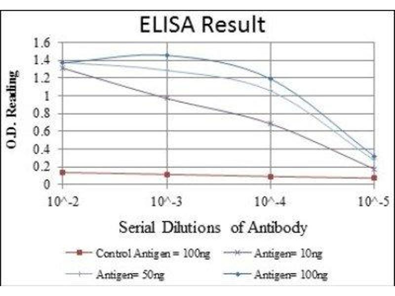 ELISA image for anti-Bone Morphogenetic Protein Receptor, Type II (serine/threonine Kinase) (BMPR2) antibody (ABIN4284959)