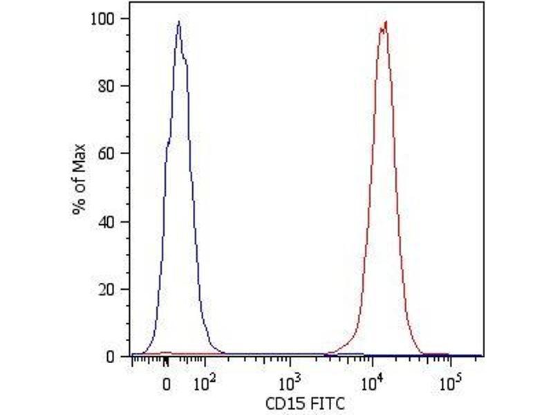 Image no. 1 for anti-Fucosyltransferase 4 (Alpha (1,3) Fucosyltransferase, Myeloid-Specific) (FUT4) antibody (FITC) (ABIN93987)