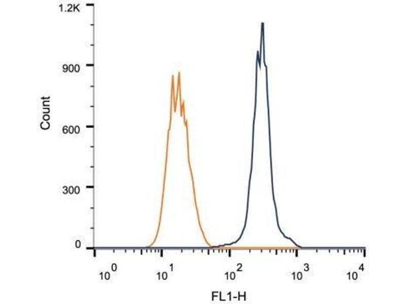 Flow Cytometry (FACS) image for anti-RAD51C antibody (RAD51 Homolog C (S. Cerevisiae)) (ABIN151297)