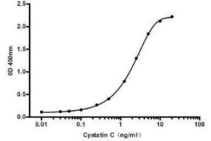 ELISA image for anti-Cytochrome C antibody (Cytochrome C, Somatic) (ABIN2169493)