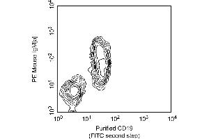 Flow Cytometry (FACS) image for anti-CD19 antibody (CD19 Molecule) (ABIN967381)