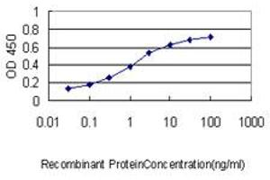 Image no. 1 for anti-PCNA Clamp Associated Factor (PAF) (AA 1-111) antibody (ABIN564218)