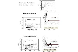 Flow Cytometry (FACS) image for ApoBrdU Red DNA Fragmentation Kit (ABIN411731)