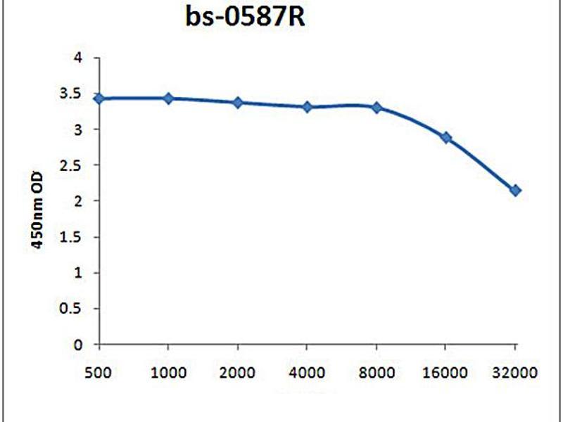ELISA image for anti-Angiotensin II Antikörper (Ang II) (ABIN670521)