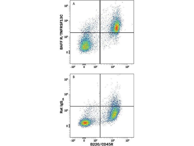 Flow Cytometry (FACS) image for anti-Tumor Necrosis Factor Receptor Superfamily, Member 13C (TNFRSF13C) (AA 2-71) antibody (ABIN4899448)