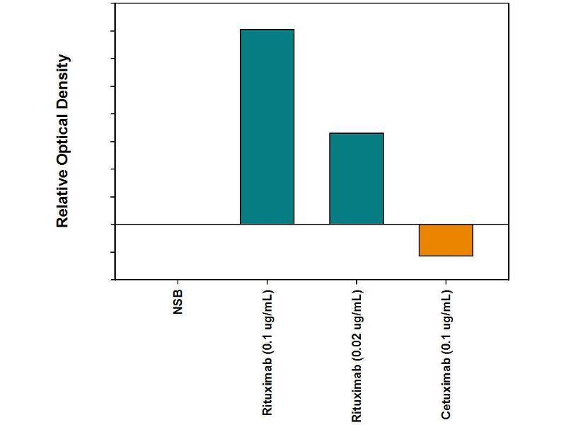 ELISA image for anti-Rituximab Antibody antibody (ABIN5666516)