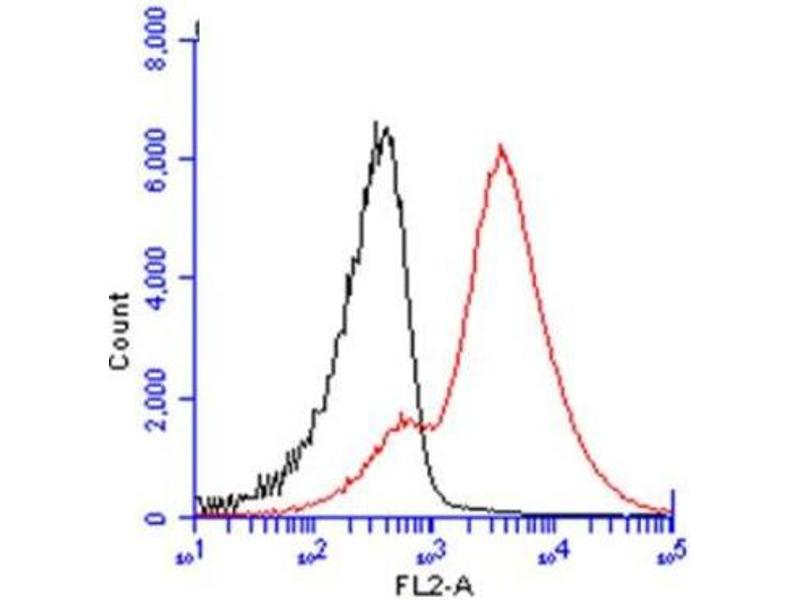 Flow Cytometry (FACS) image for anti-CD3g Molecule, gamma (CD3-TCR Complex) (CD3G) (C-Term) antibody (ABIN441281)