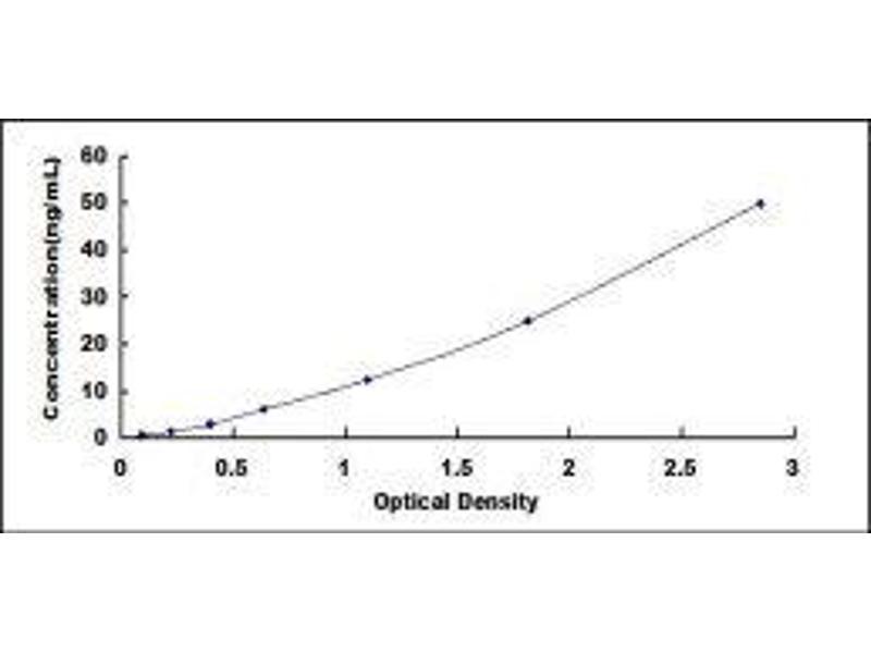 Diacylglycerol O-Acyltransferase 1 (DGAT1) ELISA Kit