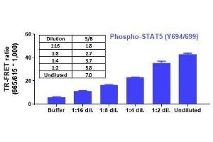 Image no. 2 for Phospho-STAT5 (Y694/Y699) and Total STAT5 TR-FRET Cellular Assay Kit (ABIN6938990)