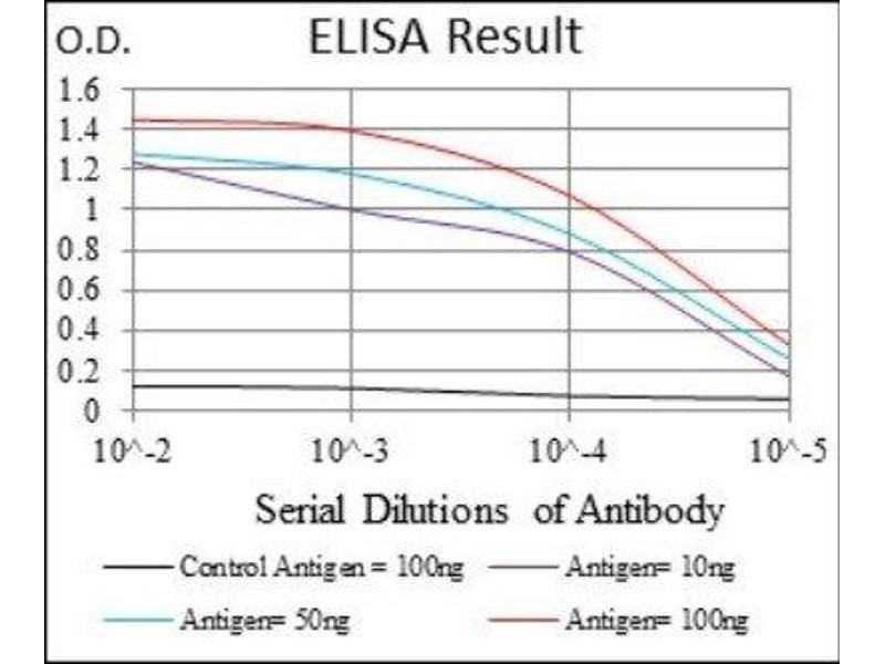 ELISA image for anti-CD24 Molecule (CD24) antibody (ABIN4290961)