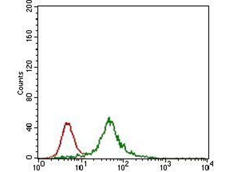 Flow Cytometry (FACS) image for anti-Zinc Finger Protein 42 (ZFP42) (AA 249-310) antibody (ABIN1724852)
