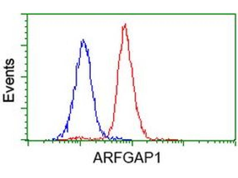 image for anti-ADP-Ribosylation Factor GTPase Activating Protein 1 (ARFGAP1) antibody (ABIN1496679)
