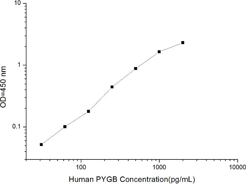 phosphorylase, Glycogen, Brain (GPBB) ELISA Kit