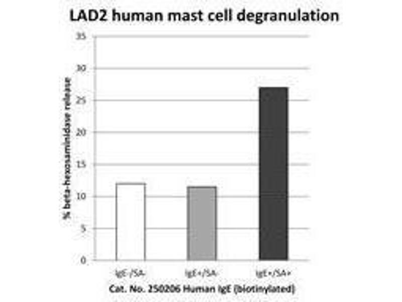 ELISA image for IgE protein (Biotin) (ABIN1583010)