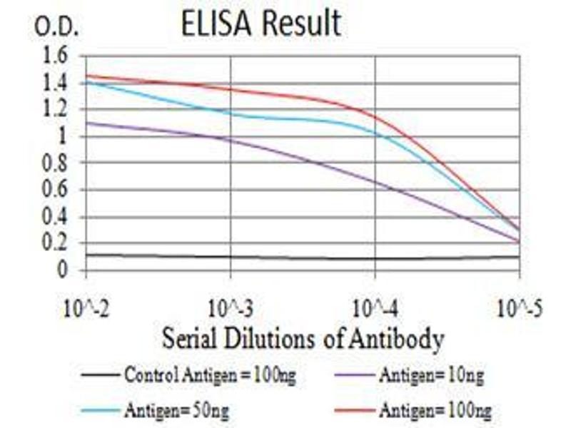 ELISA image for anti-V-Akt Murine Thymoma Viral Oncogene Homolog 1 (AKT1) (AA 1-150) antibody (ABIN5542264)