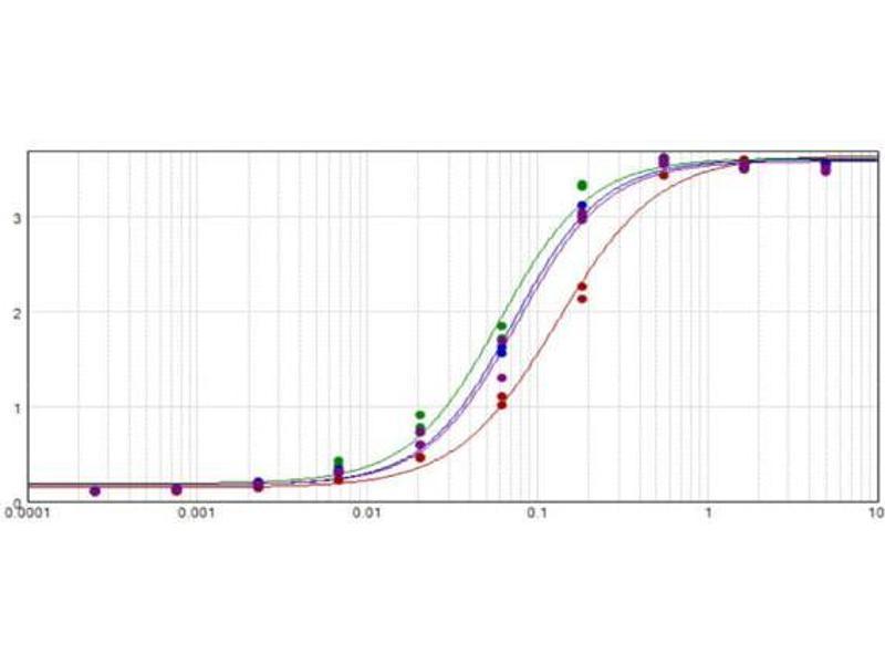 Image no. 2 for Rabbit anti-Goat IgG (Heavy & Light Chain) antibody (Alkaline Phosphatase (AP)) - Preadsorbed (ABIN101206)
