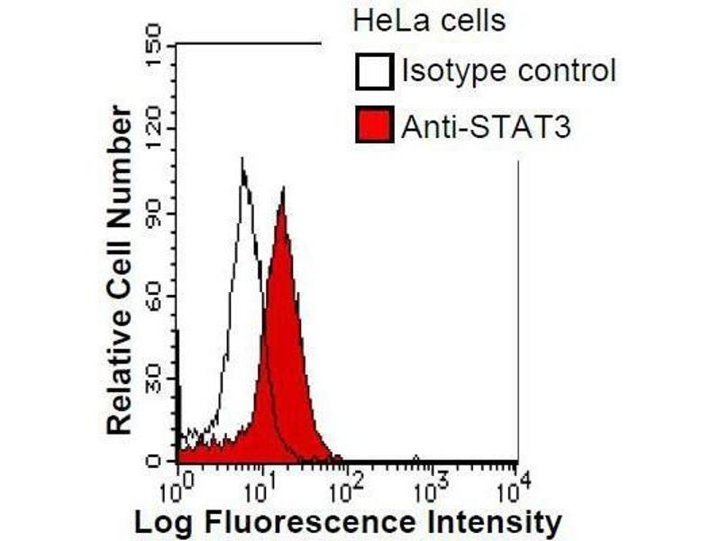 Flow Cytometry (FACS) image for anti-STAT3 antibody (Signal Transducer and Activator of Transcription 3 (Acute-Phase Response Factor)) (ABIN933094)