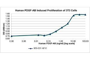 Image no. 1 for Platelet-Derived Growth Factor alpha Polypeptide (PDGFA) protein (ABIN6700387)