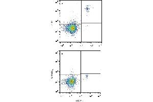 Flow Cytometry (FACS) image for anti-Chemokine (C-C Motif) Receptor 3 (CCR3) antibody (PE) (ABIN4898217)