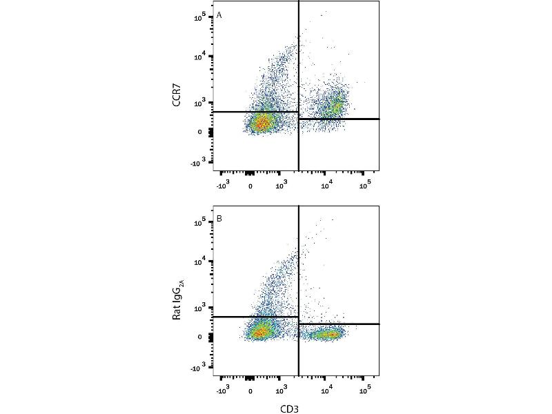 Flow Cytometry (FACS) image for anti-Chemokine (C-C Motif) Receptor 7 (CCR7) antibody (ABIN4900691)