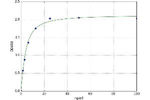 Image no. 1 for Insulin-Like Growth Factor Binding Protein 5 (IGFBP5) ELISA Kit (ABIN5523442)