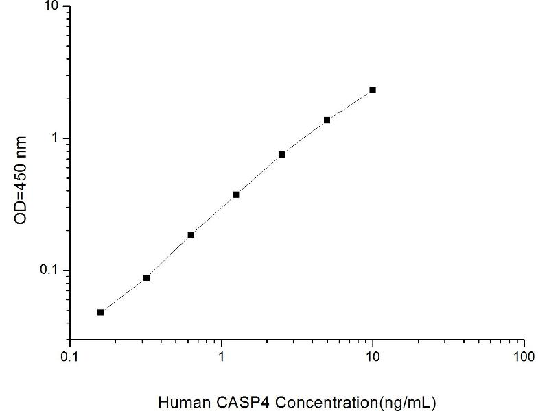 Caspase 4, Apoptosis-Related Cysteine Peptidase (CASP4) ELISA Kit (2)