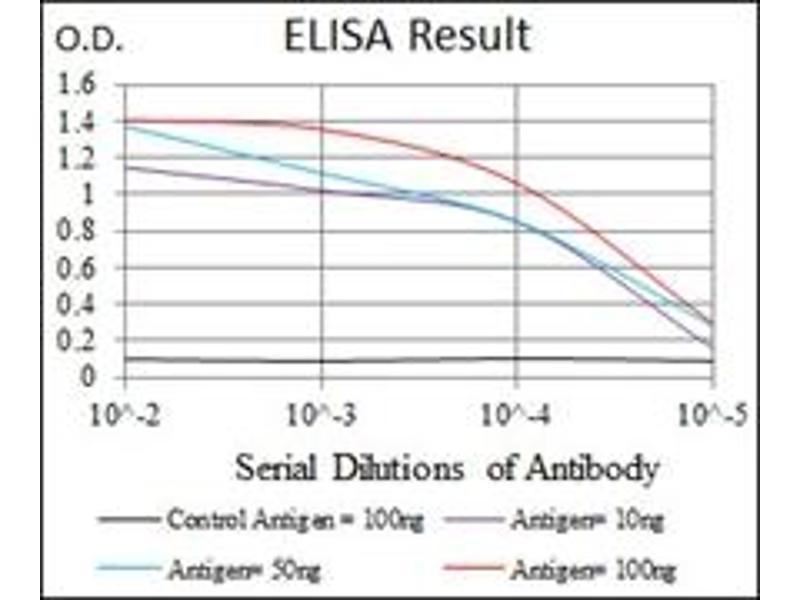 ELISA image for anti-Thrombopoietin antibody (THPO) (ABIN1109245)