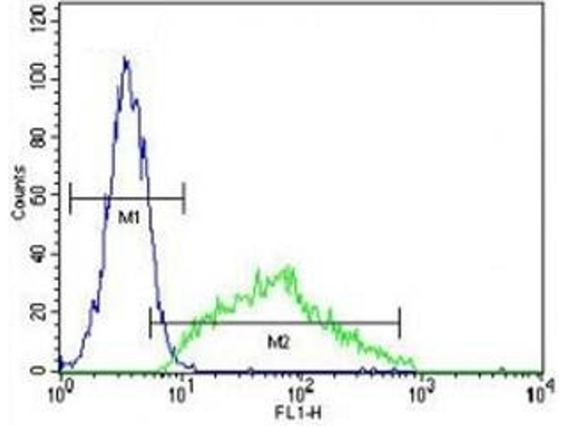 Flow Cytometry (FACS) image for anti-Leptin (LEP) (AA 8-37) antibody (ABIN3031600)