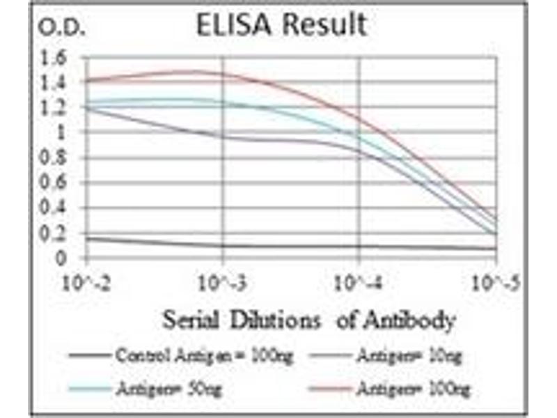 ELISA image for anti-FOXO1 antibody (Forkhead Box O1) (ABIN1107270)
