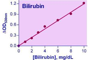 Biochemical Assay (BCA) image for Bilirubin Assay Kit (ABIN1000256)