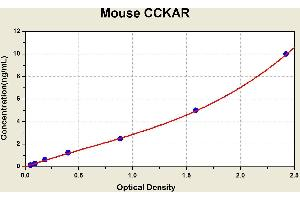 Image no. 1 for Cholecystokinin A Receptor (CCKAR) ELISA Kit (ABIN1114116)