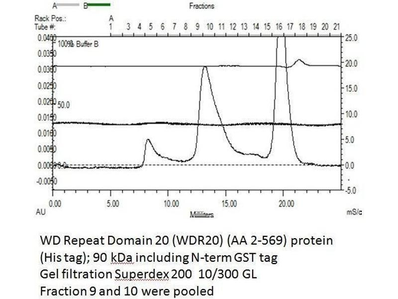 Size-exclusion chromatography-High Pressure Liquid Chromatography (SEC-HPLC) image for WD Repeat Domain 20 (WDR20) (AA 2-569) protein (His tag,GST tag) (ABIN3075585)