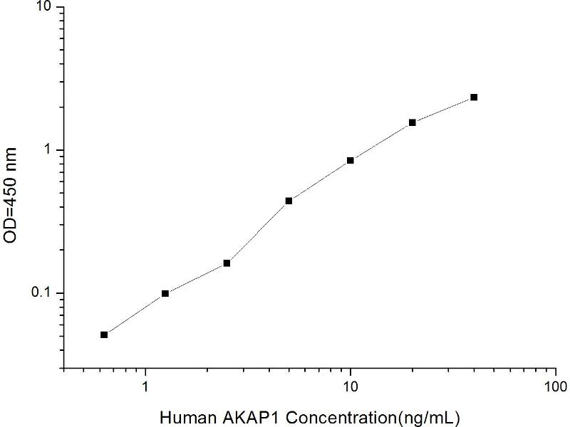 A Kinase (PRKA) Anchor Protein 1 (AKAP1) ELISA Kit