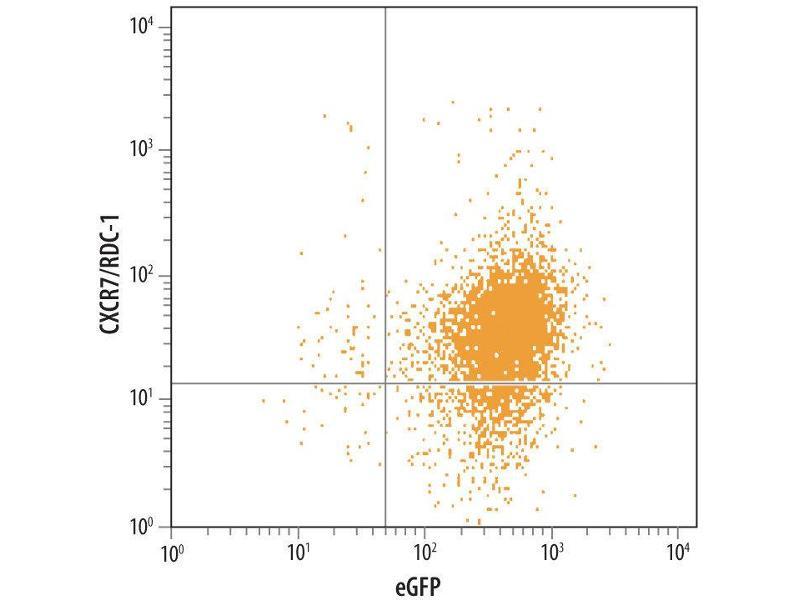 Flow Cytometry (FACS) image for anti-Chemokine (C-X-C Motif) Receptor 7 (CXCR7) (AA 1-47), (AA 103-118), (AA 184-213), (AA 274-296), (Extracellular Loop), (N-Term) antibody (ABIN4899363)
