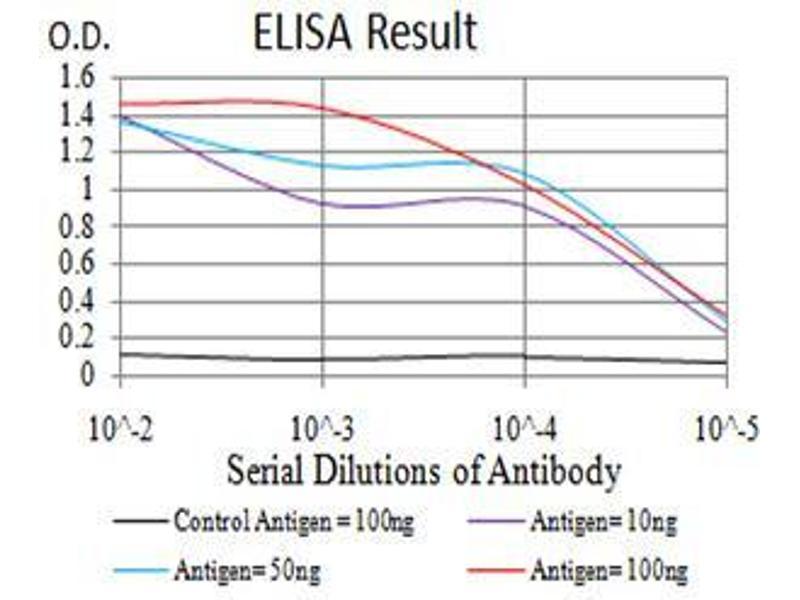 ELISA image for anti-RAN, Member RAS Oncogene Family (RAN) (AA 1-216) antibody (ABIN5542382)