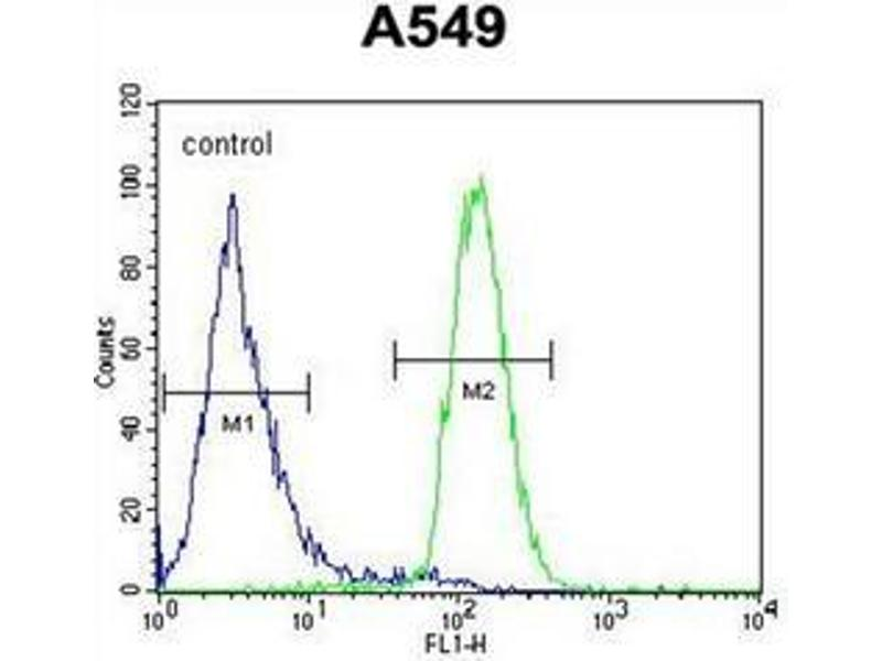 Flow Cytometry (FACS) image for anti-Leukocyte Immunoglobulin-Like Receptor, Subfamily A (With TM Domain), Member 2 (LILRA2) (AA 62-89), (Middle Region) antibody (ABIN951417)